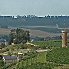 Vineyard Tower by Turtle6