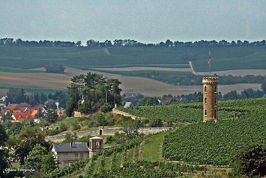 Vineyard Tower by Turtle6