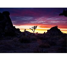 Clouds at Sunset, Joshua Tree Photographic Print