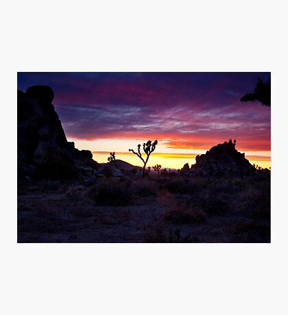 Clouds at Sunset, Joshua Tree Photographic Print