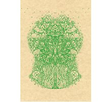 Fractal Forest Green Knight Photographic Print