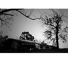Two barns with trees Photographic Print