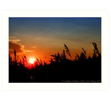 July Sunset - Montana, USA Art Print