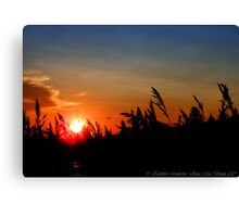 July Sunset - Montana, USA Canvas Print