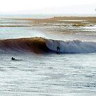 Surfers Paradise by Vince Gaeta