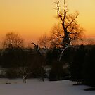 A snowy sunset by Charlotte Jarvis