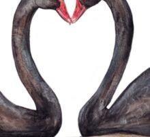 Black Swan Pair Sticker