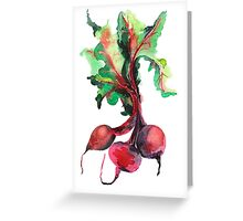 Watercolor image of beet root on white background.  Greeting Card