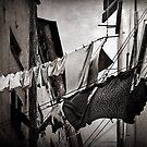 The washing by Barbara  Corvino
