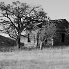 Old Homestead Black and White by Jim Terry