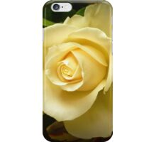 Roses of Love iPhone Case/Skin