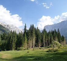 Julian Alps / Italy by smrcek