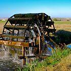 Waterwheel Irrigating Fields by Jim Terry