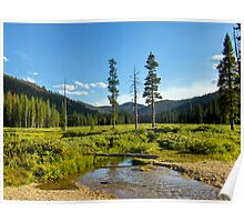 Inlet Stream at Bull Trout Lake Poster