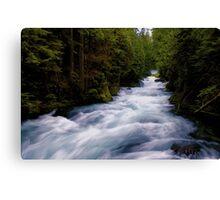 McKenzie River below Sahalie Falls Canvas Print