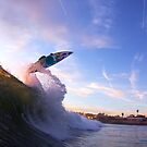 Backside Air at Sunset by Vince Gaeta