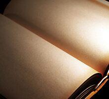 book ... just an empty book by smrcek