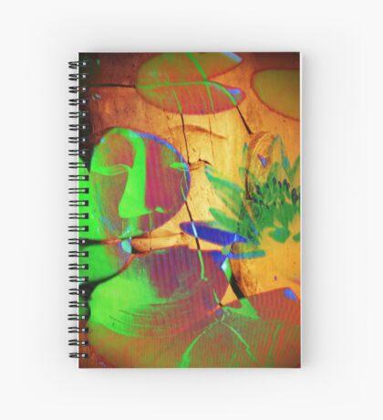 Buddha_6824 Spiral Notebook