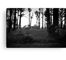 M2 Canvas Print