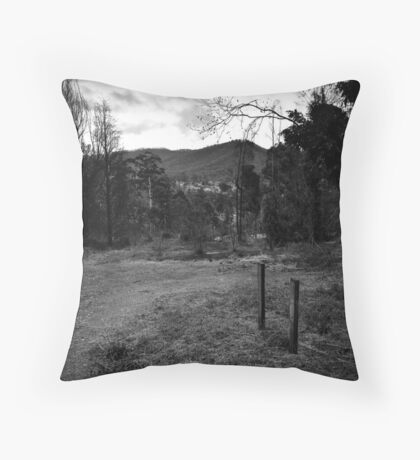 M11 Throw Pillow