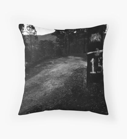 M15 Throw Pillow