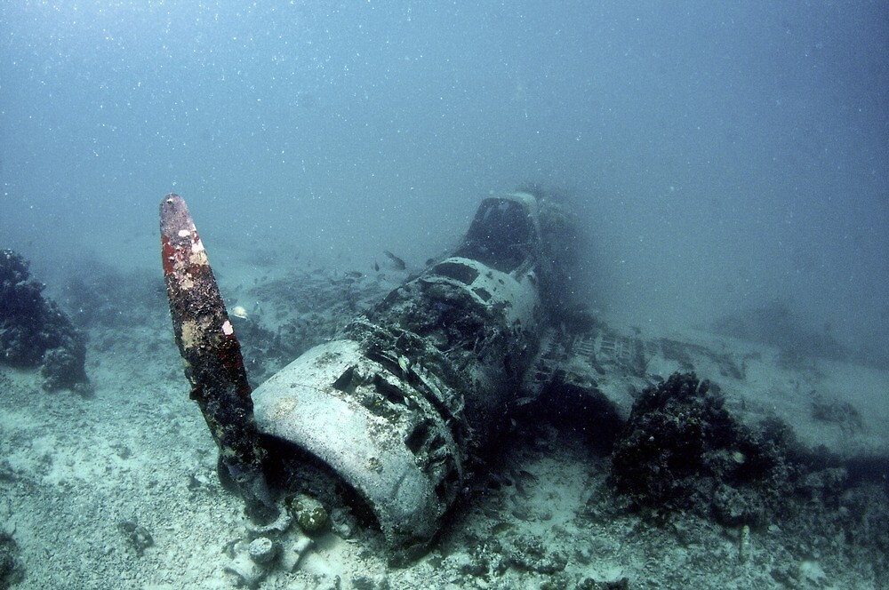 Fighter Planer Wreck by Rick Grundy