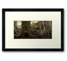 Treehouse Community Framed Print