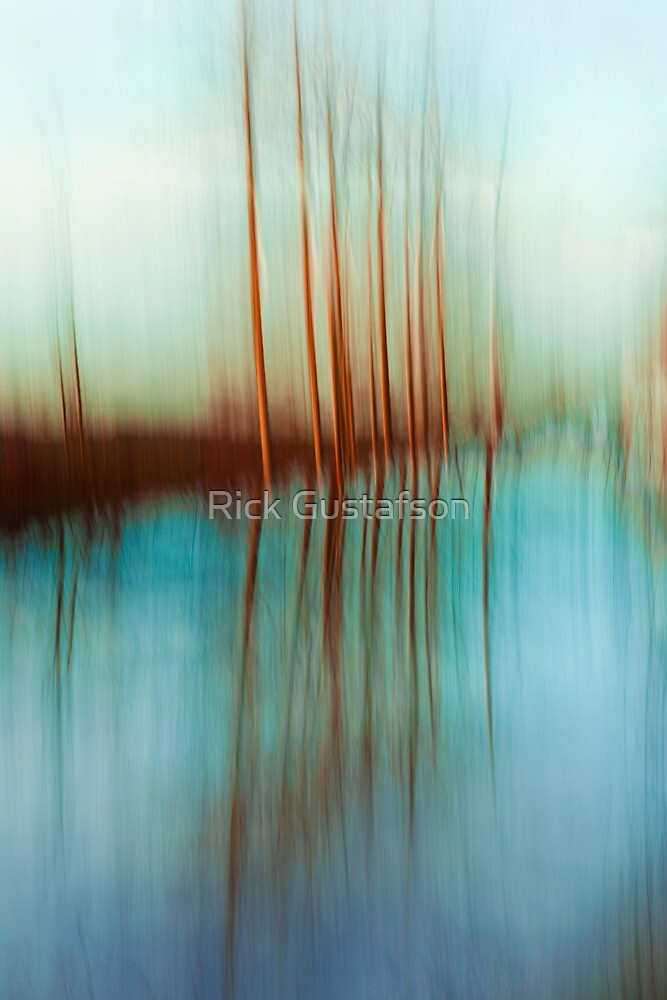 Perspective Reflected by Rick Gustafson