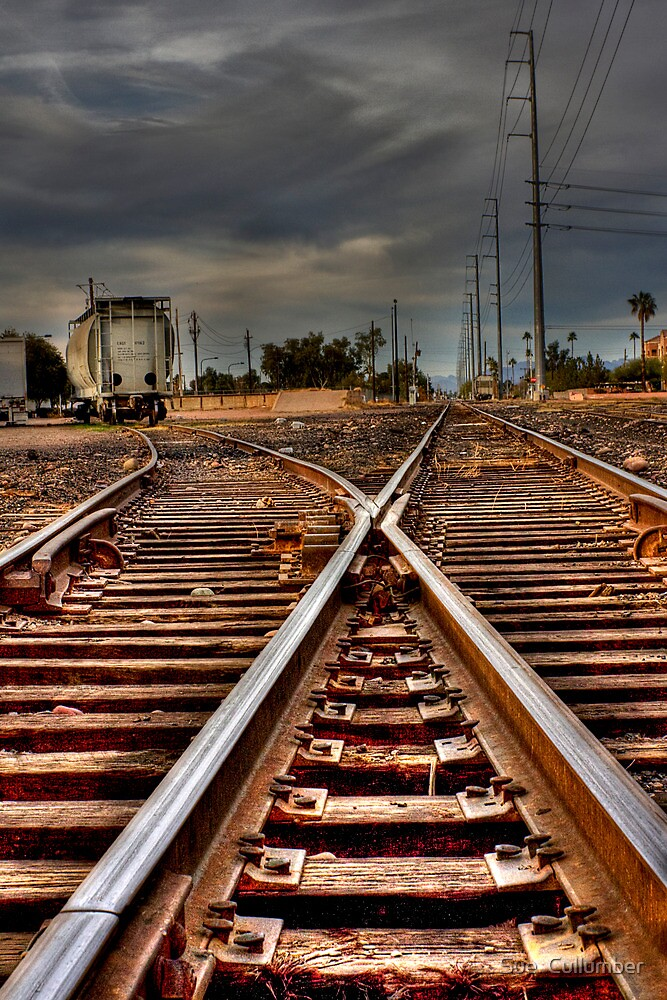 On the Track by Sue  Cullumber