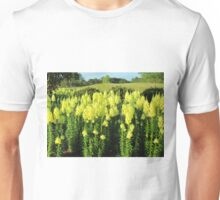 Field Of Yellow Snapdragon Unisex T-Shirt