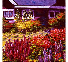 Purple House & Garden Photographic Print