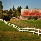 Farm in Langley by MaluC