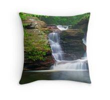 Murray Falls Throw Pillow