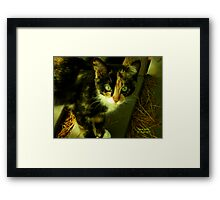Hidee and the Case of the Laughing Wounded Framed Print