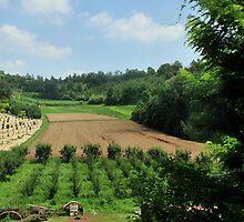 Piemontese Landscape by MaluC