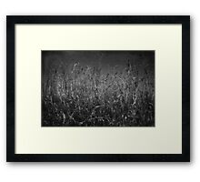 Your Whisper Haunts Me Framed Print