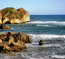 Along the Great Ocean Road - Victoria by EdsMum