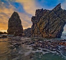 Seal Point, South Westland by Paul Mercer