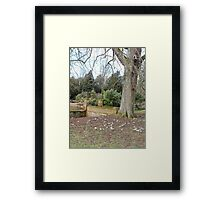 Snowdrop Strength Framed Print