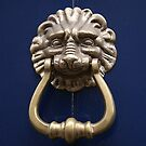 Xtreme Piercing Door Knocker by patjila