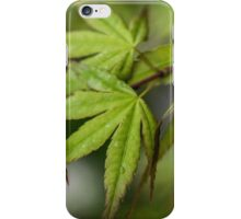 Japanese Maple iPhone Case/Skin