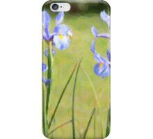 A walk in the gardens ... iPhone Case/Skin