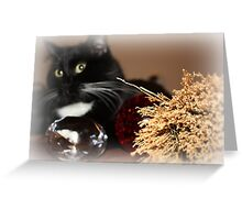 Witchy Kitty Greeting Card
