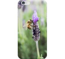 Lavender Honey iPhone Case/Skin