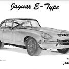 Jaguar E-Type by Steve Pearcy