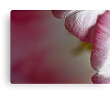Dreaming in pink Canvas Print