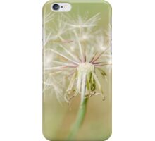 Broken Dandelion iPhone Case/Skin