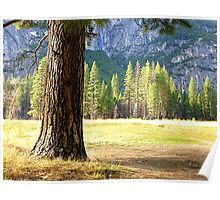 Walled round with rocks as an inland island; here are the walls of Yosemite Valley Poster