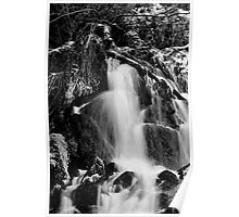 Waterfall in Monochrome Poster