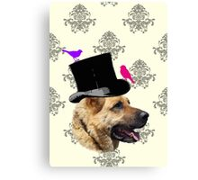 Dog Groom  Canvas Print